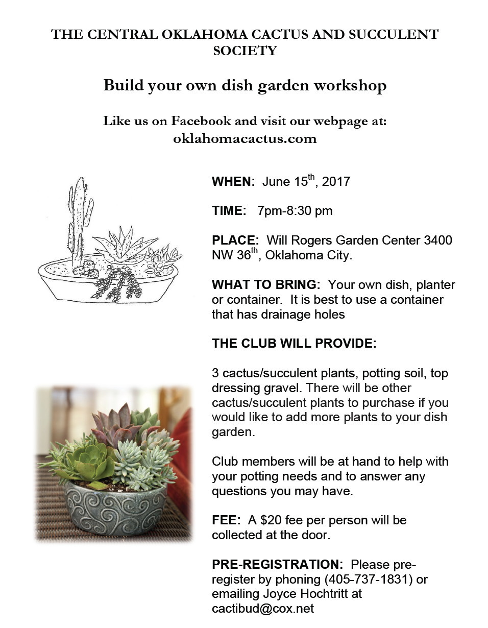 Dish Garden Workshop