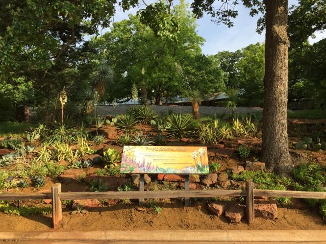 Water Conservation Garden 1